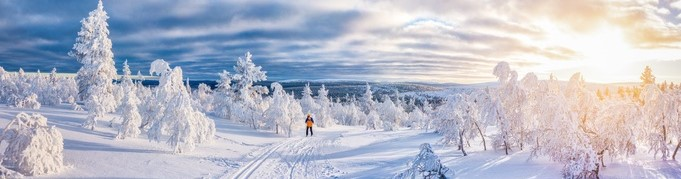 Ski CSE